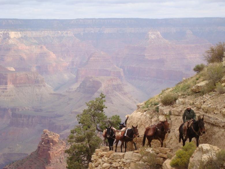 reizen met uitzicht - Grand Canyon