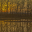 Rustige kleuren in het landschap