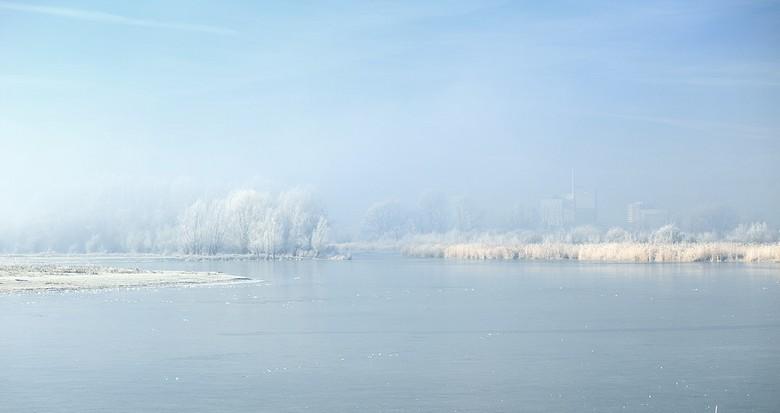 winterochtend - vanochtend onuitsprekelijk genoten in de uiterwaarden van de rijn..mist een beetje zon en volop rijp dan ontstaat er een bizar landsch