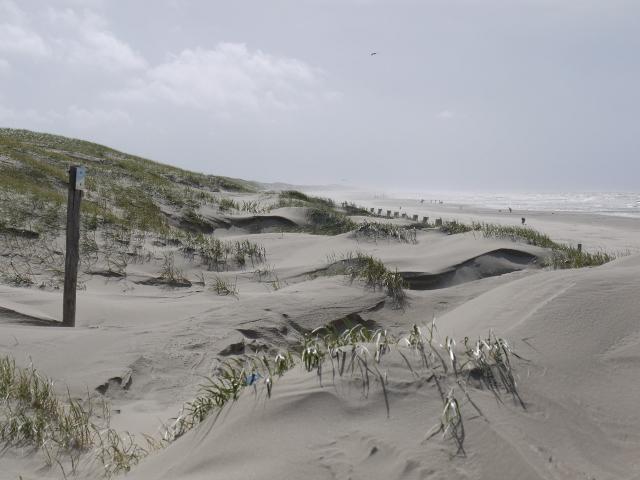 Strand Julianadorp - Tijdens een van de laatste mooie weekeinden van dit jaar deze foto gemaakt tijdens een strandwandeling.