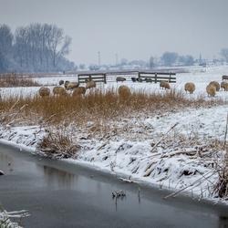 Winterlandschap Velserbroek
