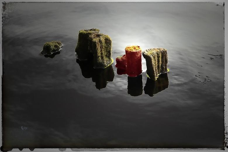 In het water -