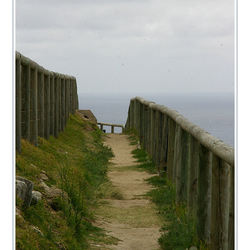 Morton Island 2