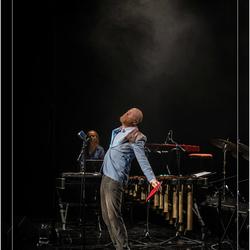 Bruno VandenBroecke  ( Acteur - Performer )