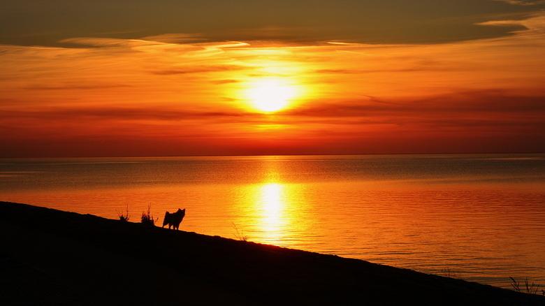 Leetah sunset silhouette a/h strand van Urk - Deze foto heb ik een tijdje geleden gemaakt toen ik bij familie op Urk was. Graag wandel ik dan langs he