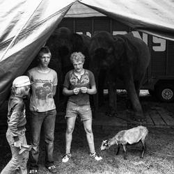 Circusjongens