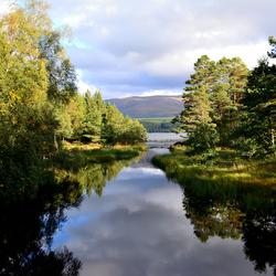 View of Loch Morlich!