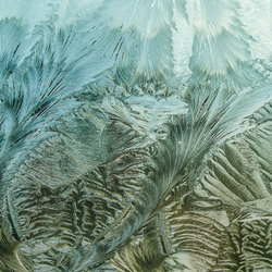 Frozen windshield