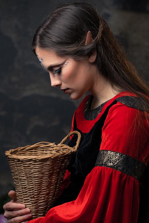 elf with basket - elf Anibor
