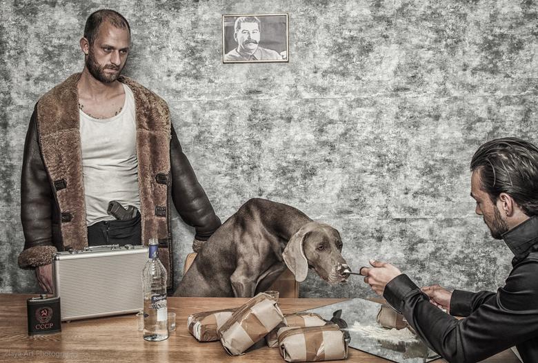 Goede poeder -  Russiche big boss oftewel Yuri the dog met zijn  opgepompte  bodyguard test kwaliteit van zijn Colombianse cartel partners