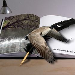 Boek zonder gans