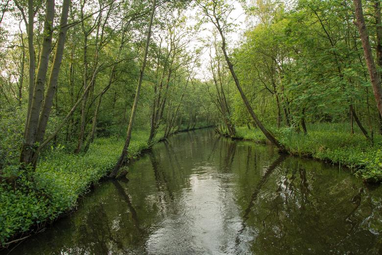 Naardermeer - Martelaarsgracht - Naardermeer - Martelaarsgracht