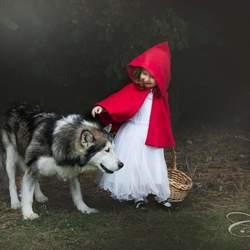 Roodkapje en de wolf