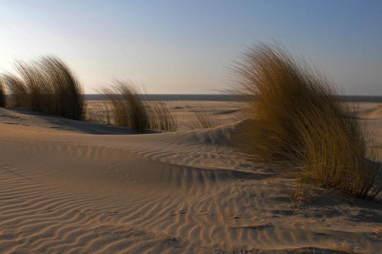strand - Haamstede, opname van een vroege voorjaarsnamiddag (april)<br /> twee foto&#039;s samengevoegd, er stond veel wind