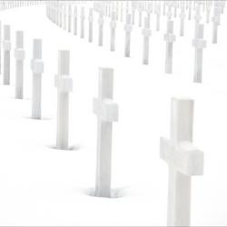 Graves white on white