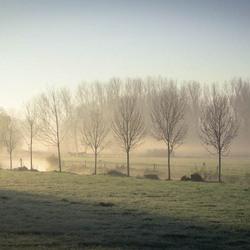 want mist kan ook mooi zijn