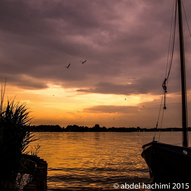 Sunset Goudse hout - Goudse hout