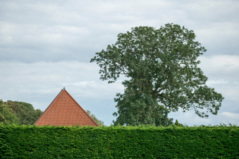 het dak - noord - hollands dak