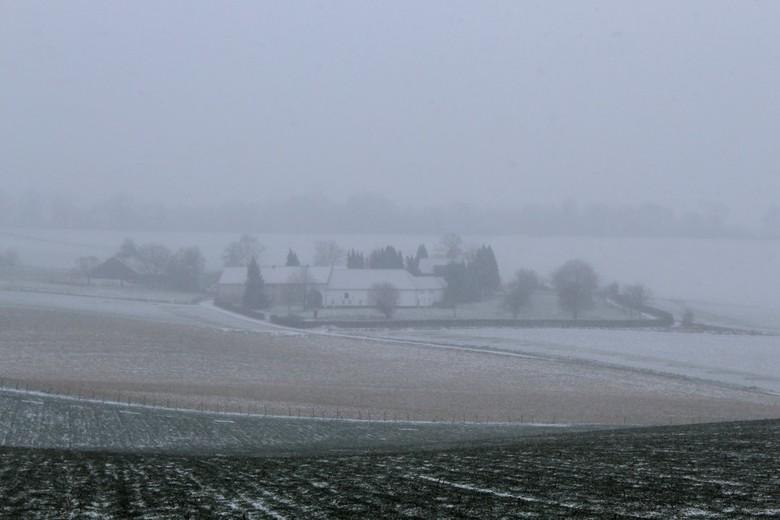 Sneeuw & Mist - Vanmiddag gefotografeerd toen het begon te sneeuwen..