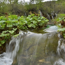 Waterval in Plitvice