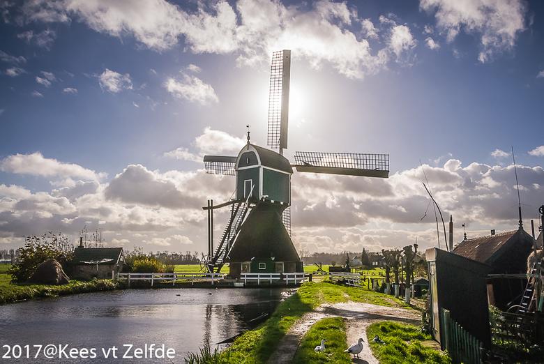 echt hollands