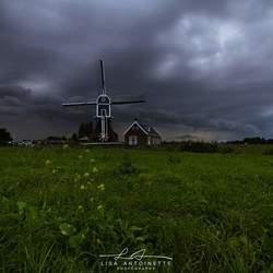 Koufront Leiden