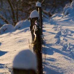 Sneeuw en landschap