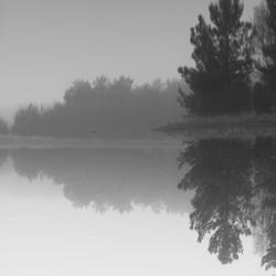 Mistige spiegeling