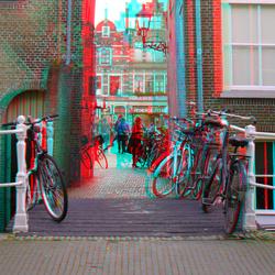 Delft 3D