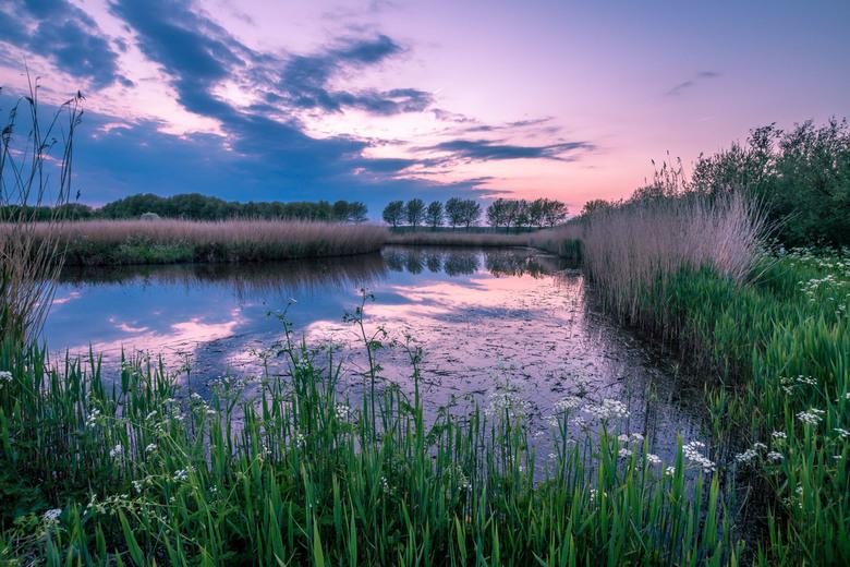 Krekengebied Bieslandse Bos