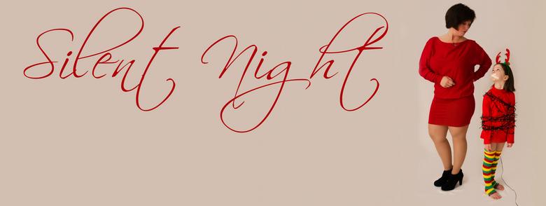 Silent night - Wij wensen iedereen een super fijne kerstdagen en een TOF 2013<br /> <br /> xxx
