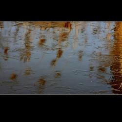 Reflectie VII