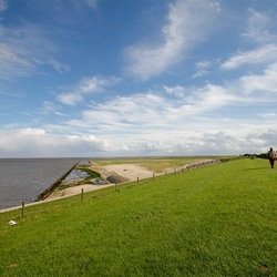 wadden in friesland