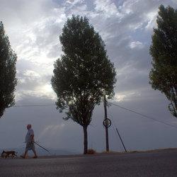 The Three Trees.