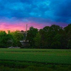 Dutch colours