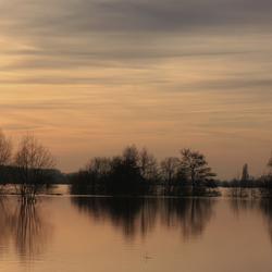 Hoog water in Limburg II