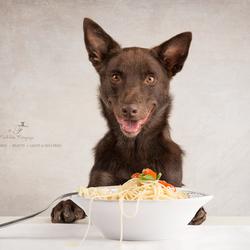 Pasta makes me smile!!