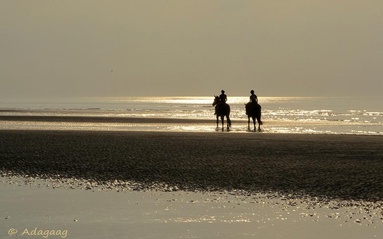 Meisjes te paard -