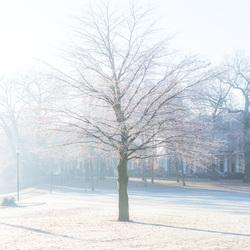 Heerlijke koude morgen in Zwolle!