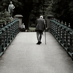 Old man crossing the bridge