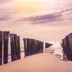 Zon, zee, strand Domburg