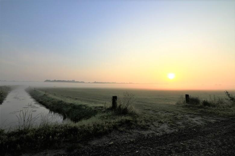 Als Drenthe ontwaakt - Op de vroege donderdagmorgen tussen de weilanden in Zuidwolde was het genieten