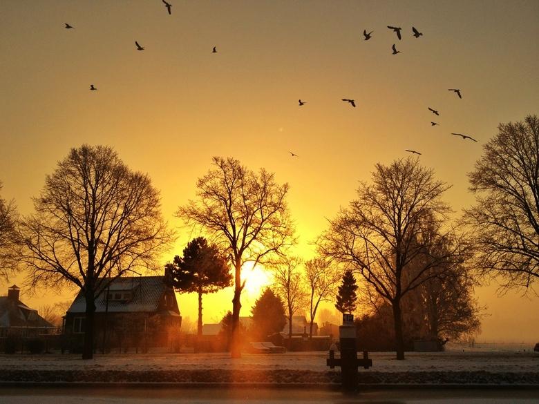 Morning glory - Goedemorgen Nederland. iPhone fotografie, bewerking met Snapseed.