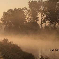 natuur Tys Damhuis  (84)