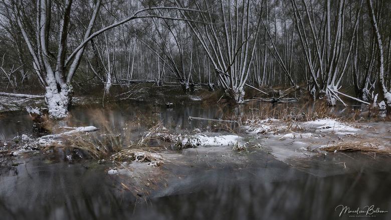 Biesbosch blizzard - Tijdens de sneeuwstorm van maandag in nationaal park de Biesbosch. dmv een lange sluitertijd toch nog wat rust weten te vinden in