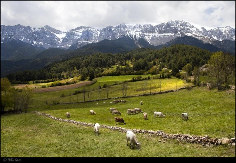 Pyreneeën 16 - De laatste uit deze serie. Allemaal bedankt voor jullie reacties.