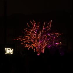 lampenboom