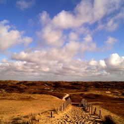 Duingebied Katwijk