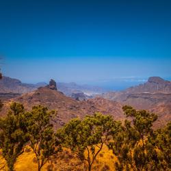 Nature of Gran Canaria