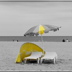 geel.